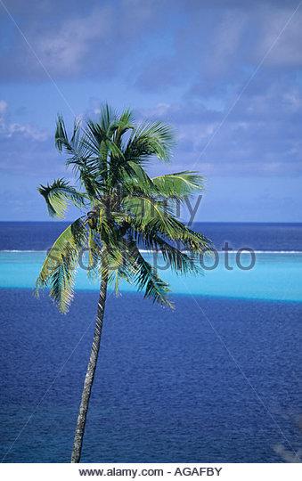 Te Tiare Beach Resort Leeward Islands French Polynesia