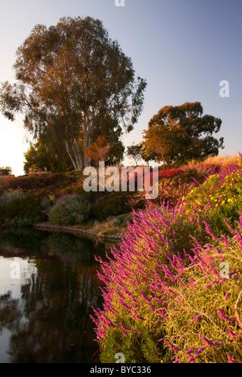 San Jose, California - Stock Image