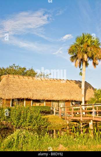 Florida Everglades Tamiami Trail US 41 Seminole Miccosukee Indian village thatch building and palm tree - Stock Image