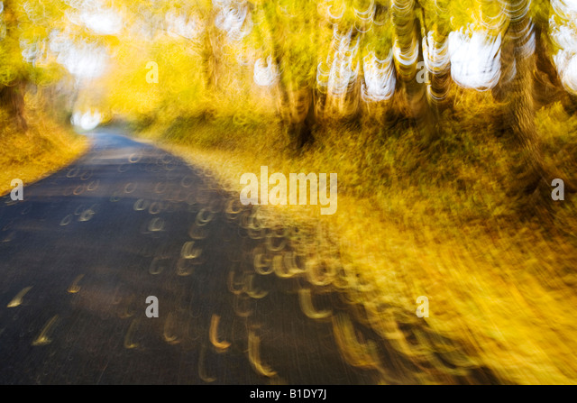 Wide angle view taken from perspective of bicycle rider on rural country road in autumn in Chester County Pennsylvania. - Stock Image