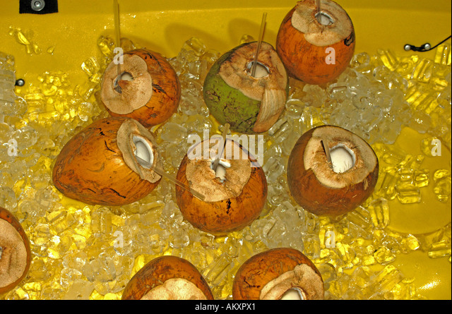 Tropics tropical islands rum drinks coconut shells - Stock Image
