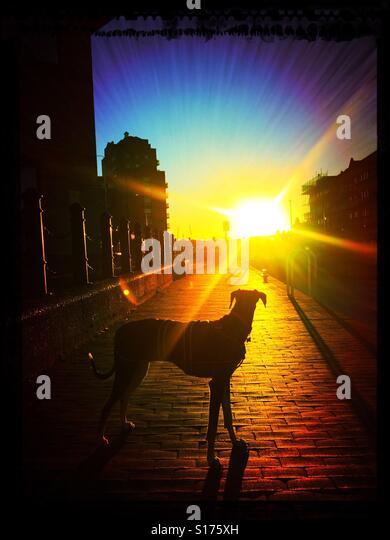 Look to the light. - Stock-Bilder