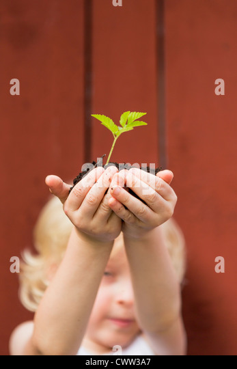 Girl holding seedling outdoors - Stock-Bilder