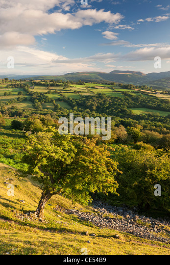Rolling countryside surrounding the Usk Valley, Brecon Beacons National Park, Powys, Wales. Summer (August) 2011. - Stock Image
