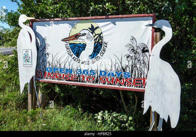Key Largo Florida Upper Florida Keys Florida Keys Wild Bird Center Laura Quinn Wild Bird Sanctuary rehabilitation - Stock Image