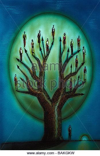 Family Tree - Stock-Bilder