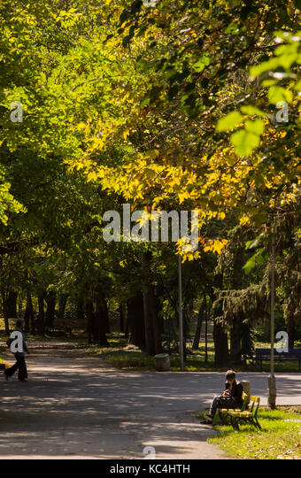 Yambol, Bulgaria. 2nd Oct, 2017. Autumn sunshine and warm light winds city center, autumn colours long shadows in - Stock Image