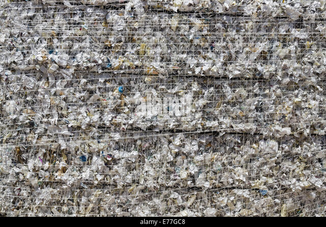 shredded white paper baled up for recycling - Stock Image