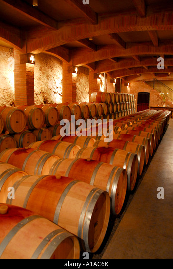 Chile wine country colchagua valley vineyard wine cellar - Stock Image