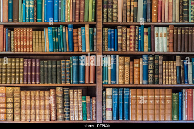 Old Antique Books On Bookshelves - Stock Image