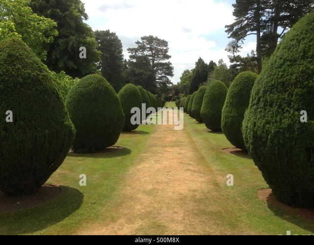 Ornate gardens - Stock Image