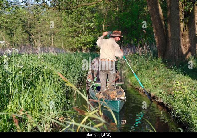 Man rowing in canoe, Müritz National Park, Mecklenburg-Western Pomerania, Germany - Stock Image