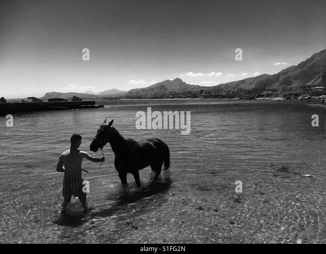 Man with horse in the sea - Stock-Bilder