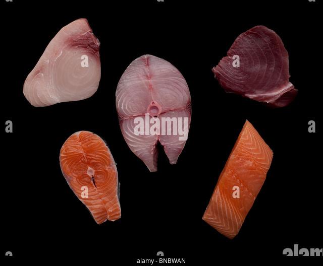 Swordfish (Xiphias gladius),  tuna  & Salmon (Salmonidae)  fillets or steaks - Stock Image