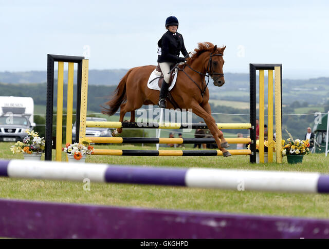 Buckham Fair, Dorset, UK, 'show jumping' - Stock Image