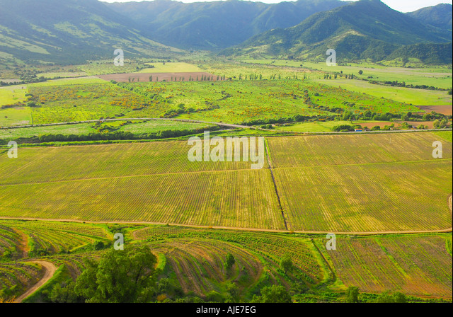 aerial view chile vineyard chilean wine country santa cruz valley, tourist destination panoramic scenic landscape - Stock Image