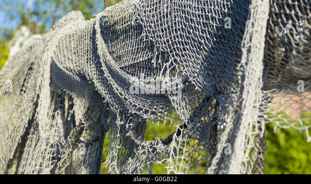 Eel nets stock photos eel nets stock images alamy for Fish trap net
