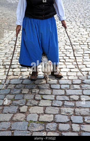 A chicken is led by a medieval-clad women with sticks on a paved path, Germany, - Stock-Bilder