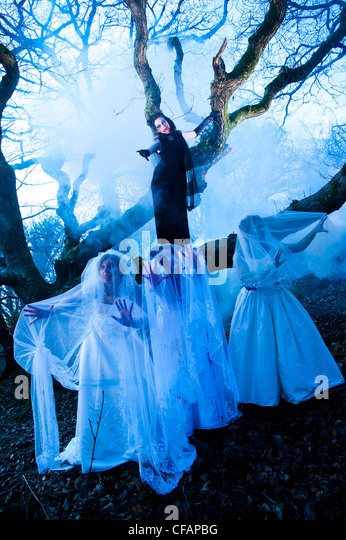 young women taking part in a Zombie bride 'trash the wedding dress' in a spooky weird woods forest tree - Stock Image