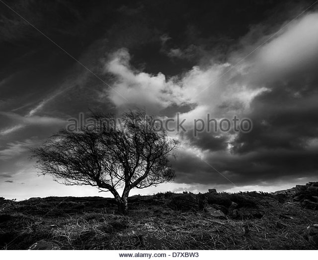 stormy day - Stock Image