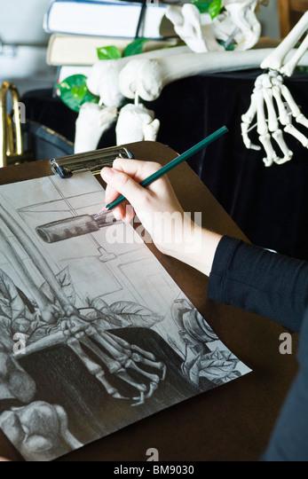Artist sketching still life drawing - Stock-Bilder