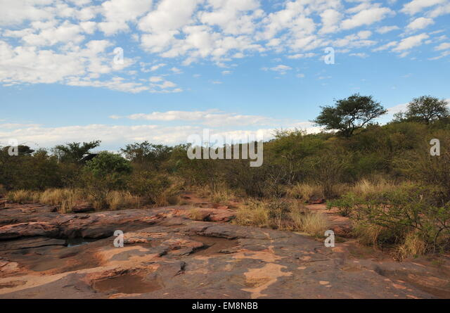 Rasesa. 16th Apr, 2015. Photo taken on April 16, 2015 shows Matsieng Rock Engravings of San people (Bushman people) - Stock Image