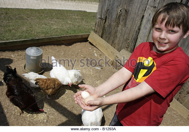 Alabama Troy Pioneer Museum of Alabama history regional education past Southern life recreated village boy student - Stock Image
