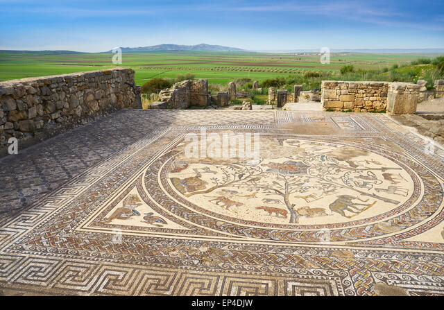 Volubilis, ancient Roman city in Zerhoun Mountains, near Fes. View to the floor mosaic in Orpfeus house. Morocco - Stock Image