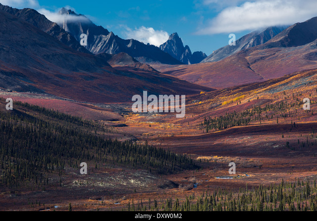 Tombstone Pass and the upper valley of the North Klondike River in autumn, Tombstone Territorial Park, Yukon Territories, - Stock Image