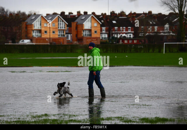 Dog Walks Near Tonbridge