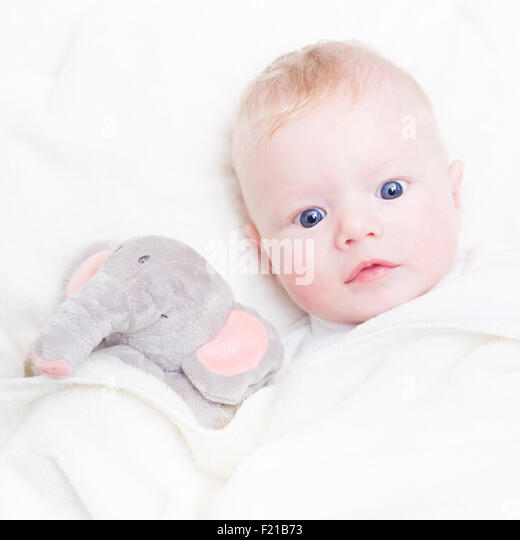 Baby with plush toy. - Stock Image