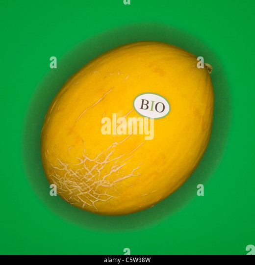 Organic Honeydew melon, elevated view - Stock Image