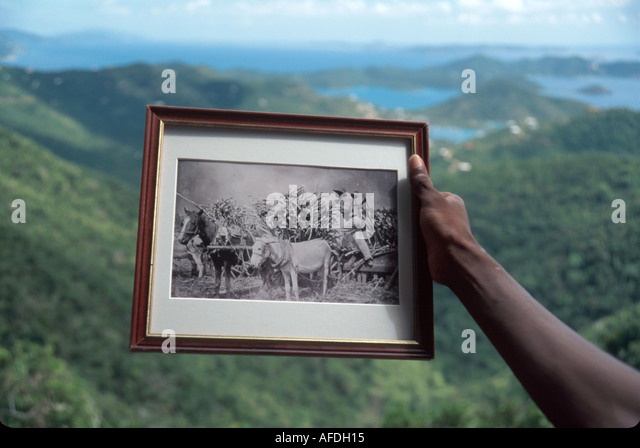US Virgin Islands St. John descendent of sugar mill slaves holds historic photo Coral Bay beyond USVI015 - Stock Image