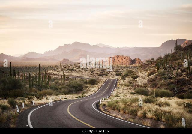 Winding road through the Mexican desert of Baja California - Stock Image