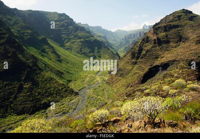Barranco de Santiago, La Gomera, Canary Islands, Spain, Europe - Stock-Bilder