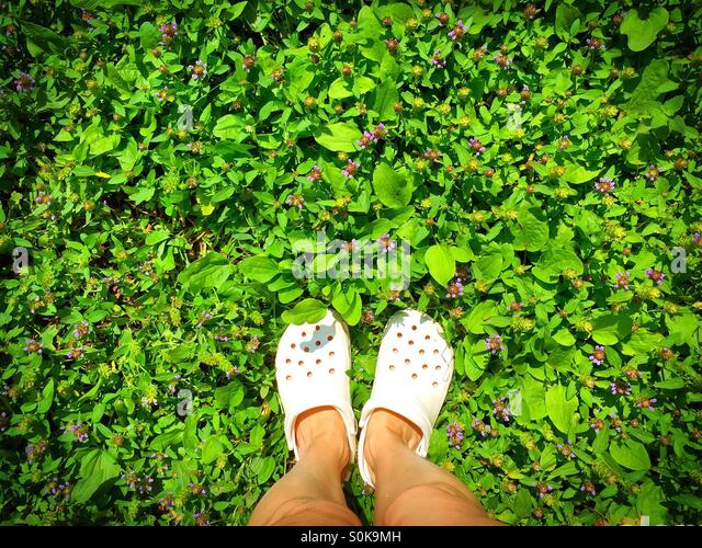 Feet in white crocs on the green grass - Stock Image