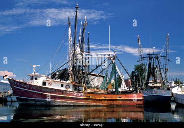 Tarpon Springs Fl shrimp boats docked near Sponge Docks Florida commerical fishing shrimping - Stock Image