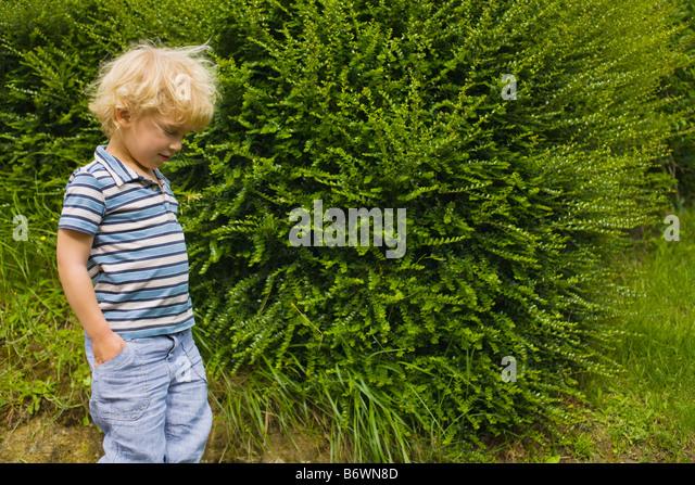 A boy walking past a bush - Stock-Bilder