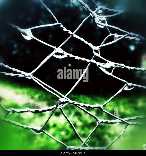 Raindrops on wire fencing - Stock Image