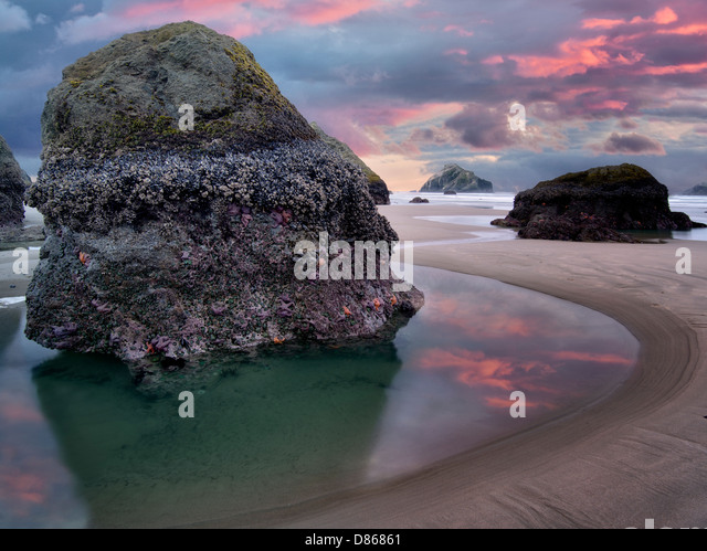 Low tide pool with starfish and sunset. Bandon, Oregon. - Stock Image