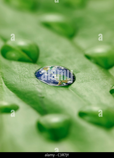 earth in water drops on a green leaf - Stock Image