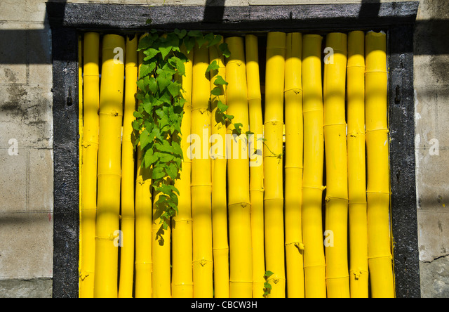 Bright yellow bamboo covering window, Roseau Dominica in the Eastern Caribbean - Stock Image