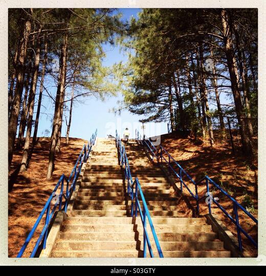 Steep stairs - Stock Image