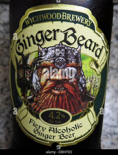Label from the Wychwood Brewery Witney Ginger Beard , a 4.2% fiery Alcoholic ginger beer. Brewed in England , Great - Stock Image