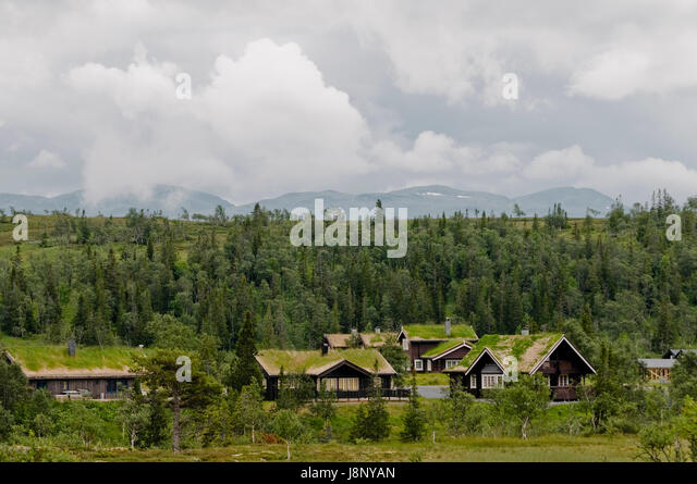 Houses with grass on roofs by forest - Stock-Bilder