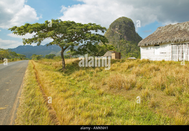 The Valle de Viñales in central Cuba - Stock Image