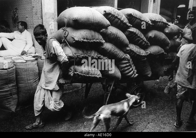 Cart puller in Sadar bazaar Delhi India - Stock Image