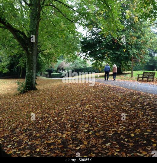 Autumn scene at Cockington village in Torquay, English Riviera (Torbay), United Kingdom. - Stock Image