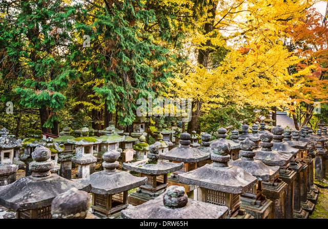 Nara, Japan. Japanese lanterns at Kasuga-taisha Shrine. - Stock Image