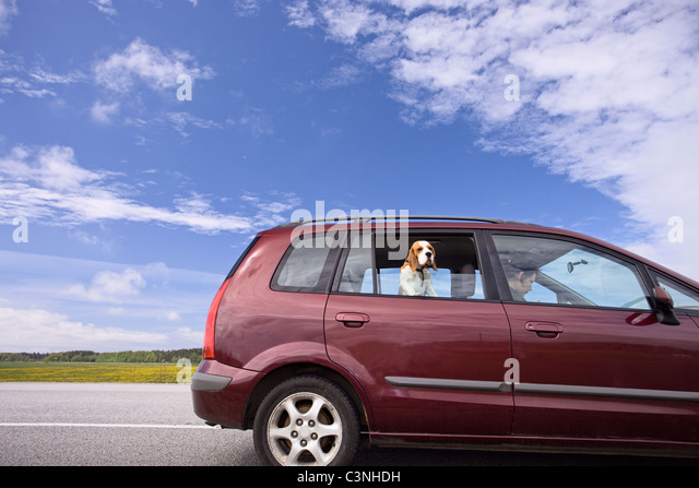 minivan on a background of cloudy sky. - Stock Image